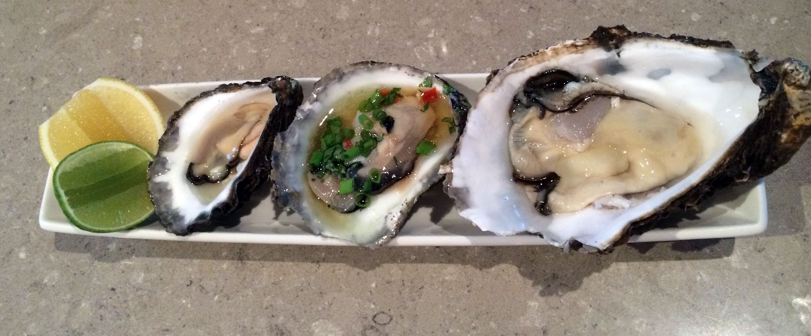 Australia's Oyster Coast